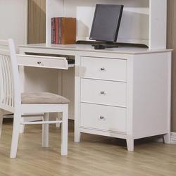 Selena Computer Desk with Drawer Storage