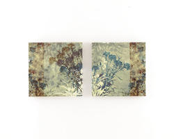Alcott Wall Art Set (2/CN)